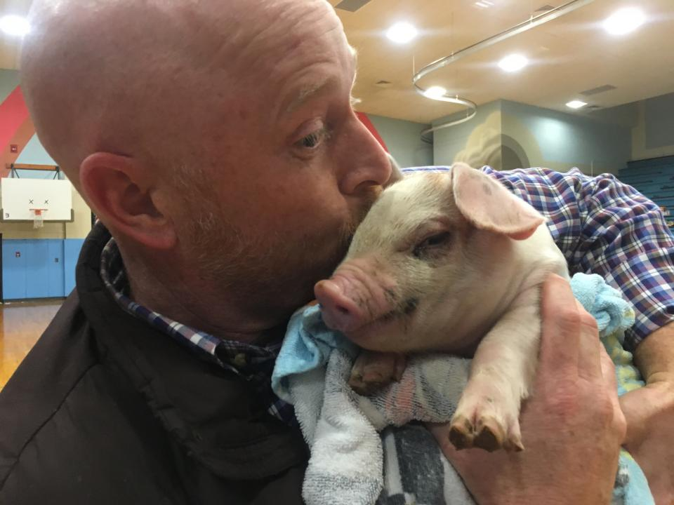 Madison Principal Kisses Pig